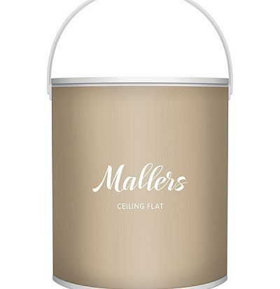 Mallers Ceilign Flat